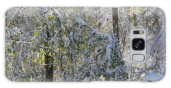 Onset Of Winter 2 Galaxy Case by Rudi Prott