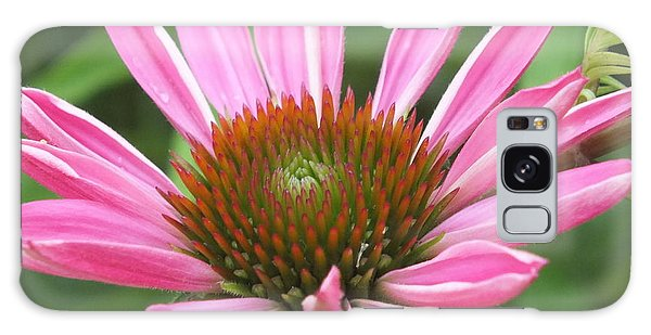 Opening Coneflower Galaxy Case