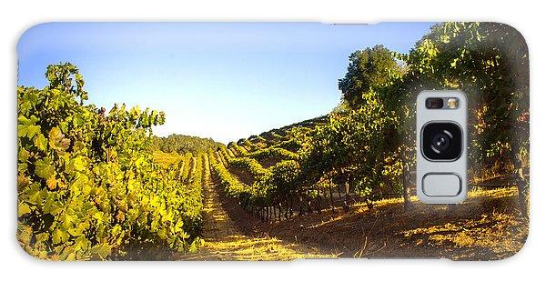 Opolo Winery Galaxy Case