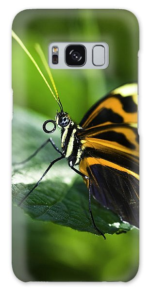 Orange And Black Butterfly Galaxy Case