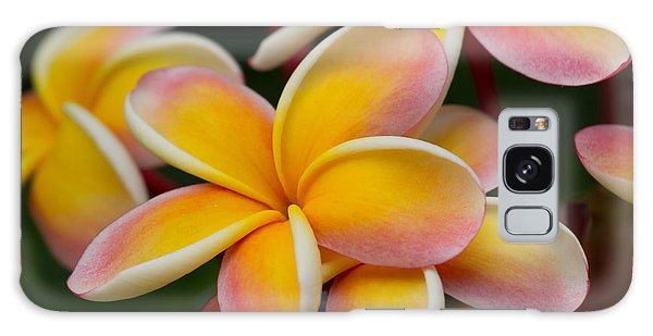 Orange And Pink Plumeria Galaxy Case