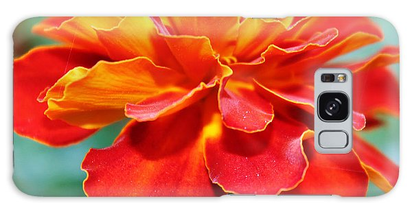 Orange And Yellow Marigold Galaxy Case by Judy Palkimas