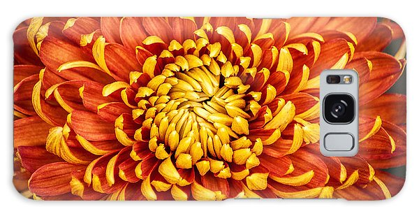 Orange And Yellow Mum Galaxy Case