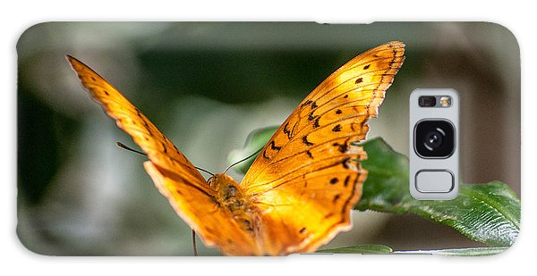 Orange Butterfly Galaxy Case
