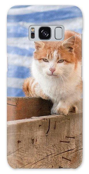 Orange Cat  Galaxy Case