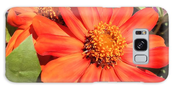 Orange Daisy In Summer Galaxy Case