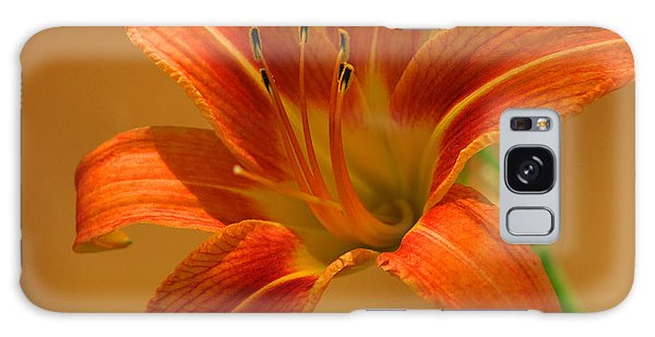 Orange Daylily Galaxy Case by Olivia Hardwicke