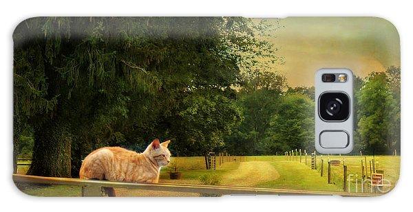 Orange Farm Cat Galaxy Case
