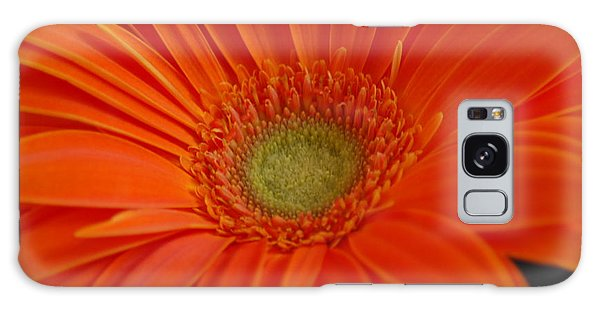 Orange Gerber Daisy Galaxy Case