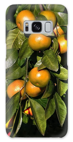 Orange Galaxy Case