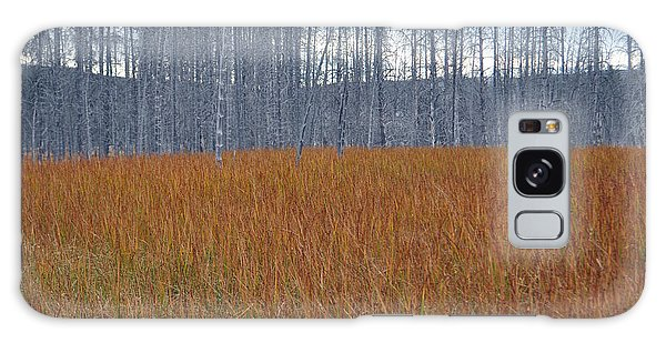 Orange Grasses And Gray Trees In Yellowstone National Park Galaxy Case