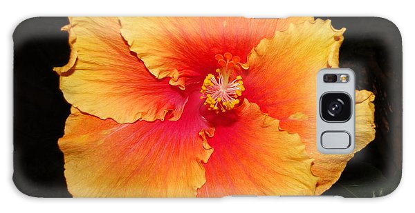 Orange Hibiscus Galaxy Case by Cindy Croal