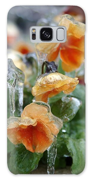 Orange Iced Pansies Galaxy Case