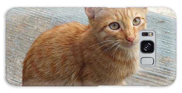Orange Kitten 2 At The Front Porch Galaxy Case