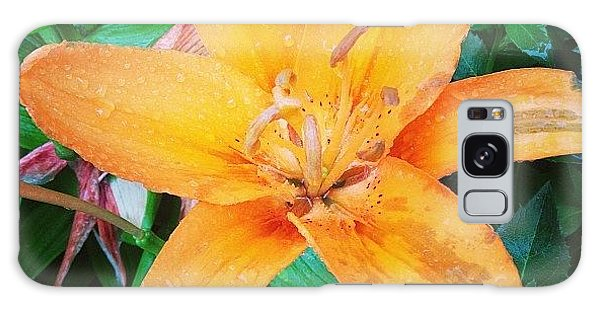 Orange Galaxy Case - #orange #lily After The #rain Is Still by Teresa Mucha