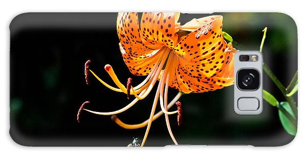 Orange Lily - Lilium Kelleyanum Galaxy Case