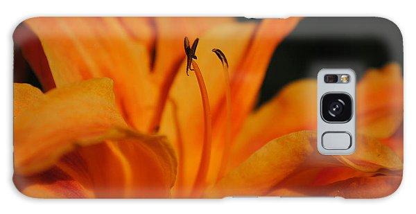 Orange Lily Galaxy Case by Robert  Moss