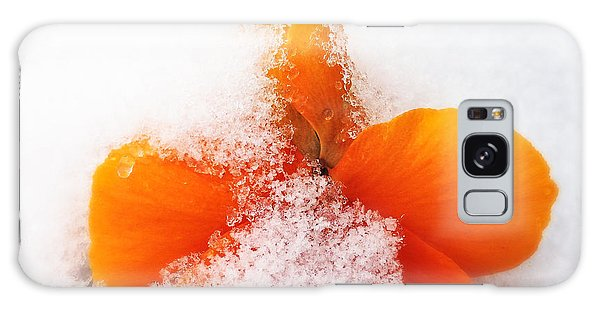 Orange Galaxy Case - Orange Pansy Flower Covered With White Snow In Spring by Matthias Hauser