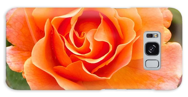 Orange Rose Lillian Galaxy Case