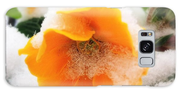 Orange Galaxy Case - Orange Spring Flower With Snow by Matthias Hauser