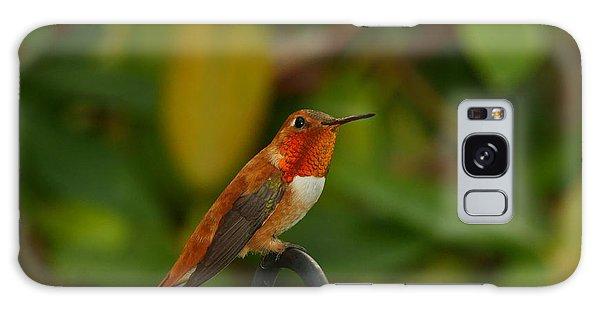 Orange Throated Hummingbird Galaxy Case by Loni Collins