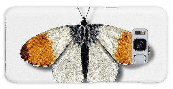 Orange Tip Butterfly - Anthocharis Cardamines Naturalistic Painting - Nettersheim Eifel Galaxy Case