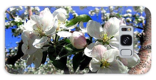 Orchard Ovation Galaxy Case