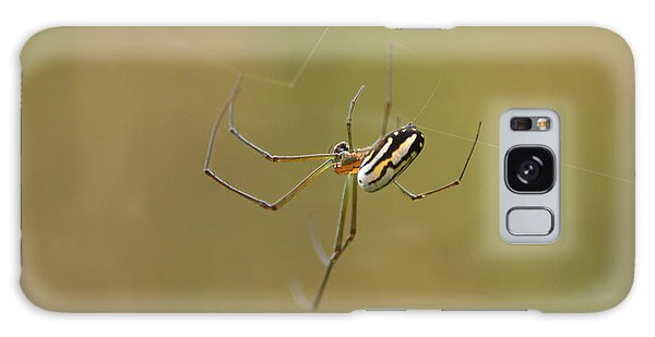 Orchard Spider Galaxy Case by Greg Allore