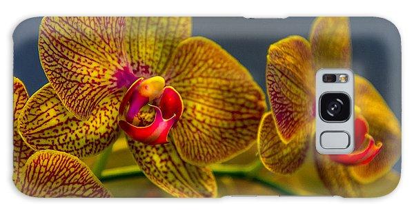 Orchid Color Galaxy Case