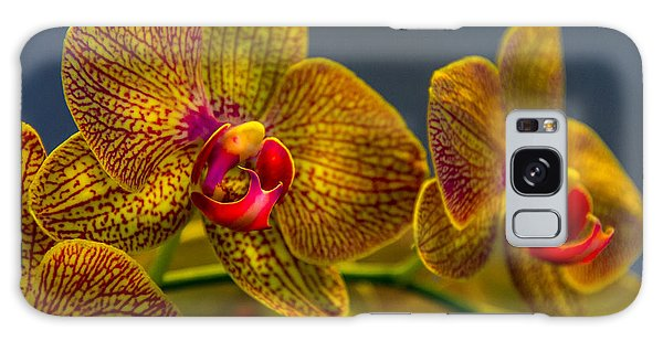 Orchid Color Galaxy Case by Marvin Spates