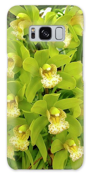 Orchidaceae Galaxy Case - Orchid Flowers by Tony Craddock/science Photo Library