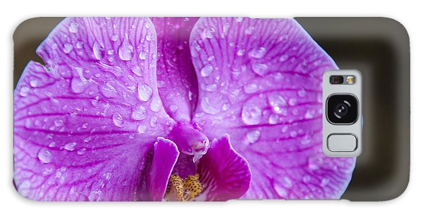 Orchid Galaxy Case by Gandz Photography