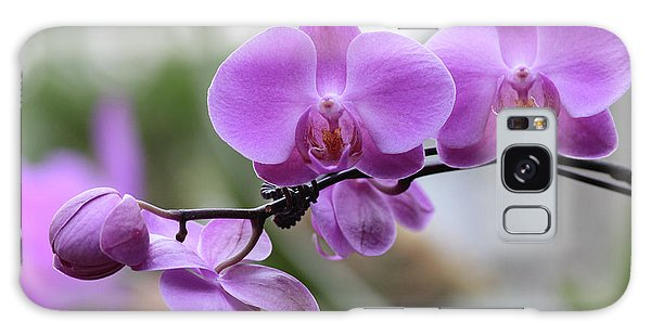 Orchid In Bloom Galaxy Case