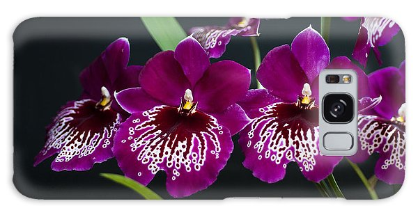 Orchid Miltonia Galaxy Case by Lana Enderle