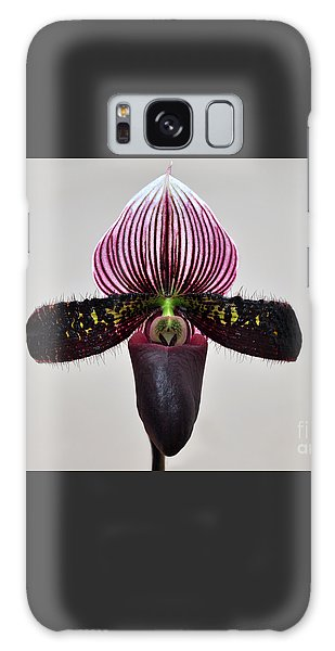 Orchid Paphiopedilum Satchel Paige X Black Beauty Galaxy Case