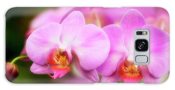 Hybrid Galaxy Case - Orchid (phalaenopsis Hybrid) by Maria Mosolova/science Photo Library
