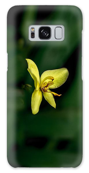 Orchid Suspense  Galaxy Case