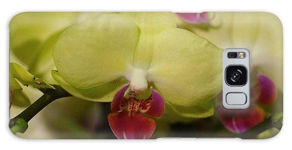 Orchids 181 Galaxy Case by Rudi Prott
