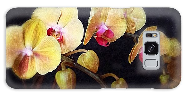 Orchids Arise Galaxy Case