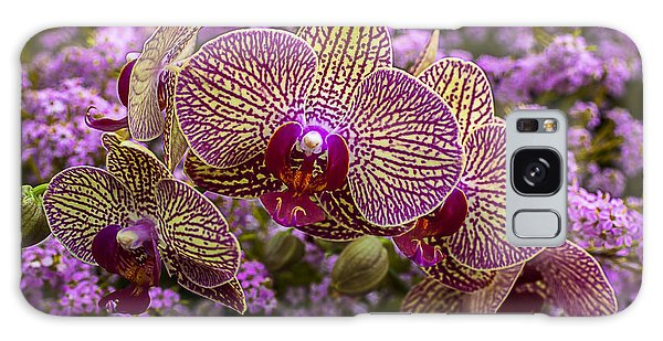 Orchidaceae Galaxy Case - Orchids In Pink Flowers by Garry Gay