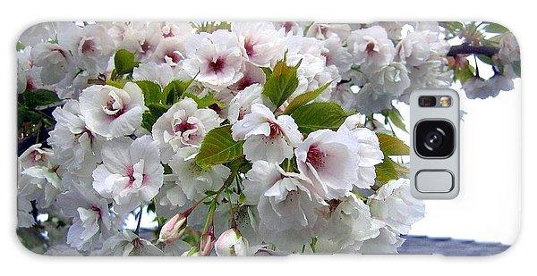 Oregon Cherry Blossoms Galaxy Case