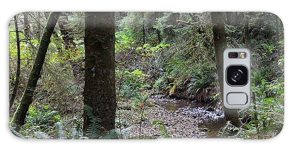 Oregon Coastal Creek Galaxy Case