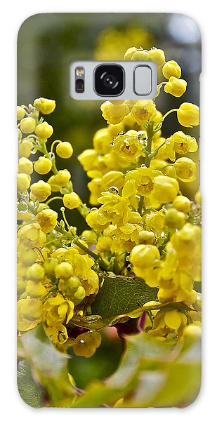 Oregon Grape Blossoms Galaxy Case