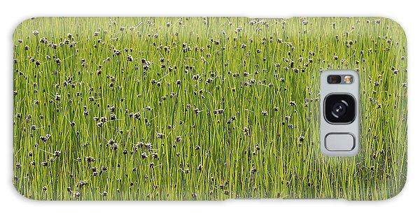 Organic Green Grass Backround Galaxy Case