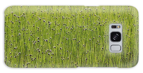Organic Green Grass Backround Galaxy Case