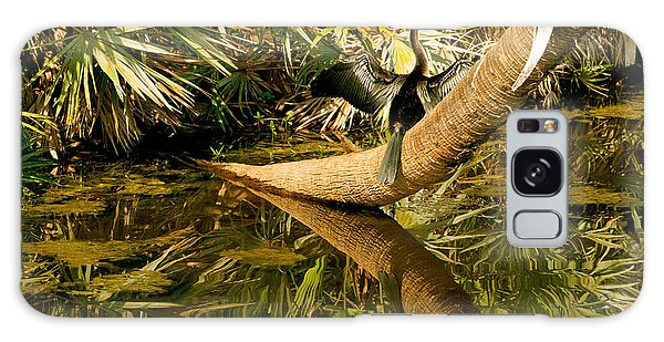 Oriental Darter Anhinga Melanogaster Galaxy Case by Panoramic Images