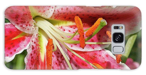 Oriental Lily Galaxy Case