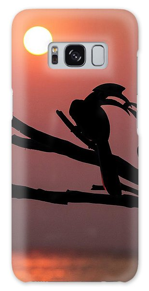 Oriental Pied Hornbills Galaxy Case by Paul Williams