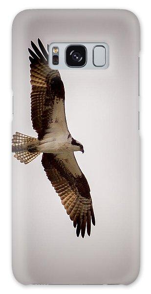 Osprey Galaxy Case by Ernie Echols