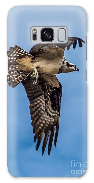 Osprey Galaxy Case - Osprey Flying Away by Robert Bales